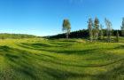 Vantaan Golfpuisto avasi ensimmäiset yhdeksän reikää